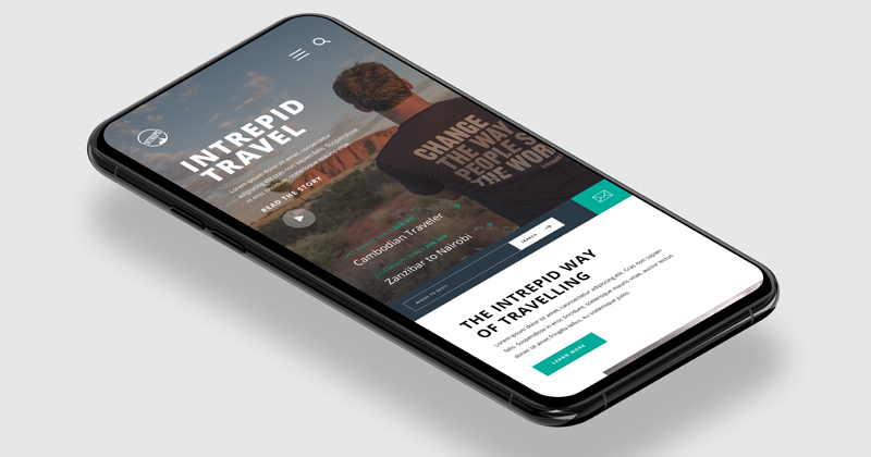 Intrepid homepage design - mobile mockup